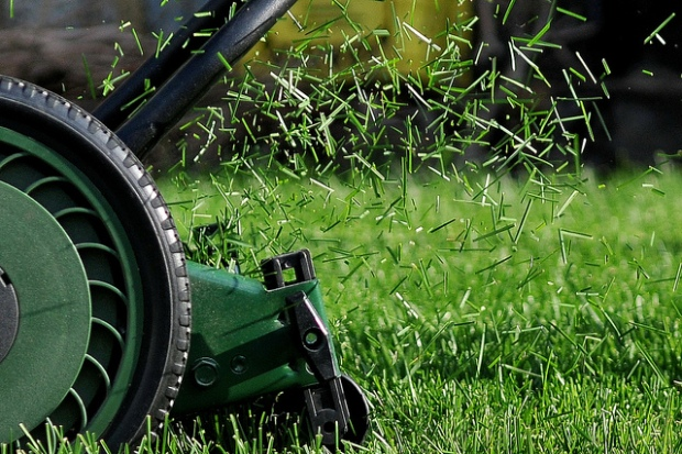 mowing-grass